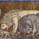 Bestiary and various theological texts.
