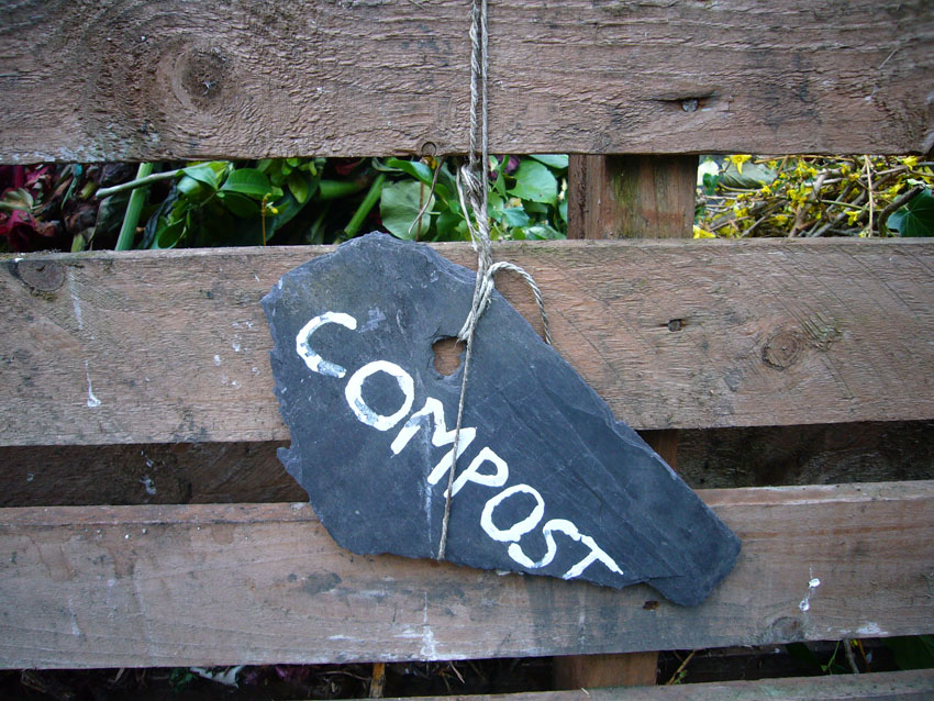 Compost by Kirsty Hall
