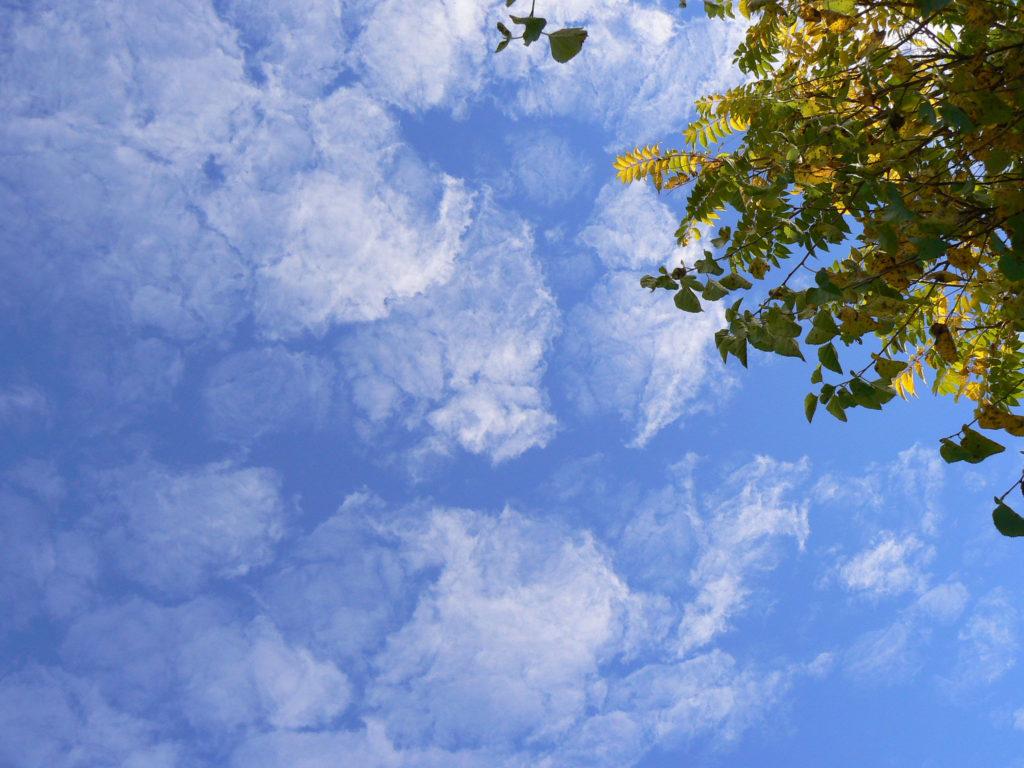 clouds-1024x768