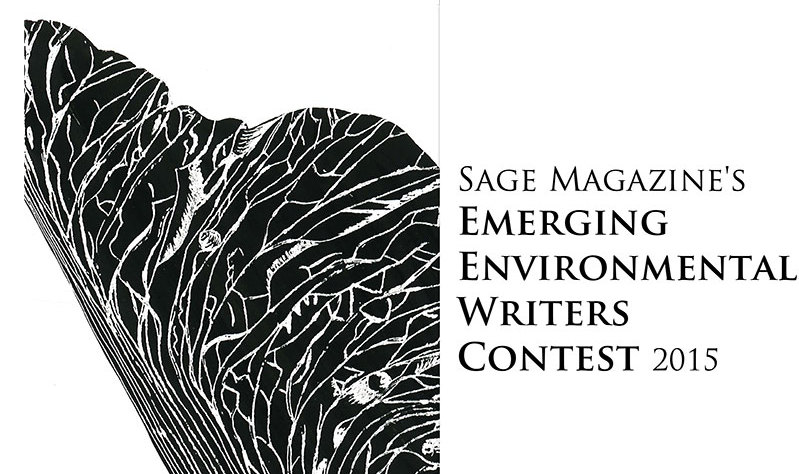 Sage environmental writing contest